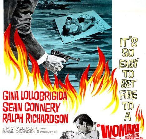 영화 갈대 포스터